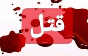 قتل نوجوان ۱۴ ساله در پاکدشت/قاتل ظرف چند ساعت دستگیر شد