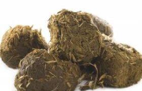 مهم ترین خواص عنبر نسارا در طب سنتی